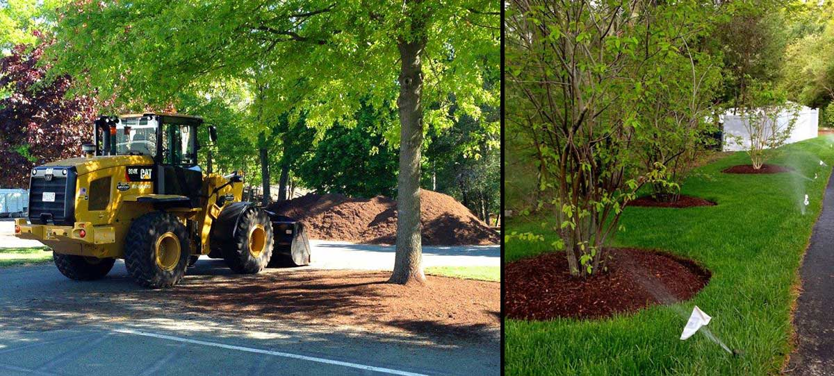 commercial landscaping company walpole medfield dover westwood ma
